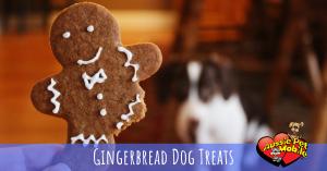 gingerbread dog treats 12-19
